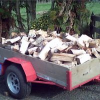 *Updated* Fire Wood For Sale Mixed Macrocarpa and Pine
